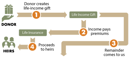 Lifetime Insurance Diagram
